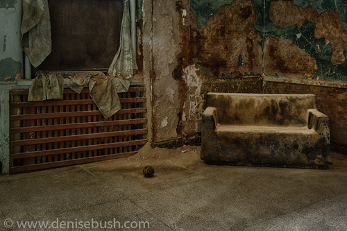 'The Social Room'  © Denise Bush