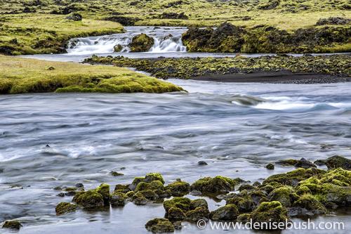 'Mossy Cascade'  © Denise Bush
