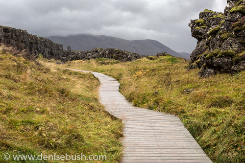 'Rock Garden Path'  © Denise Bush