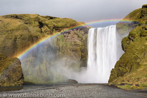 'Skogafoss Rainbow'  © Denise Bush