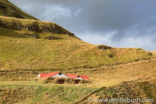 'Slopeside Shelter'  © Denise Bush