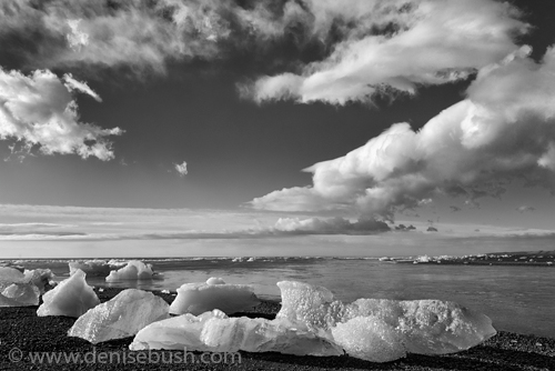 'Beached Icebergs in B & W'  © Denise Bush