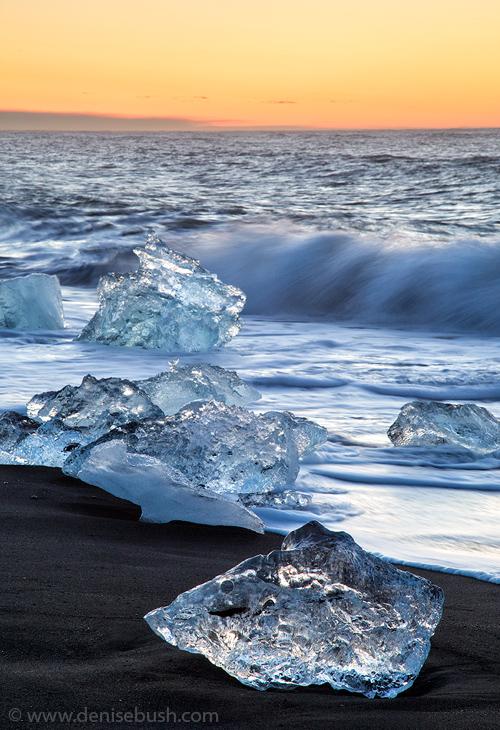 'Icebergs At Sunrise'  © Denise Bush