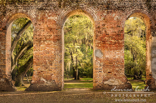 'Arch Triptych'  © Denise Bush