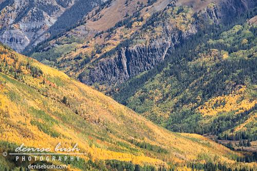 'Autumn Mountains Close-up' © Denise Bush