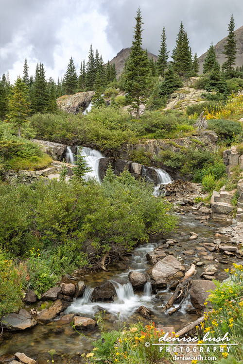 'Basin Cascades' © Denise Bush