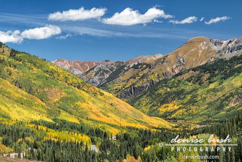 'Red Mountain Pass View' © Denise Bush