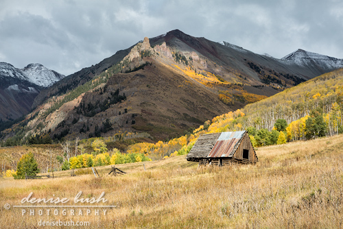 'Mountain Log Barn' © Denise Bush