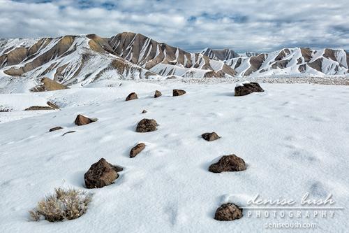 'High Desert Winter Landscape' © Denise Bush