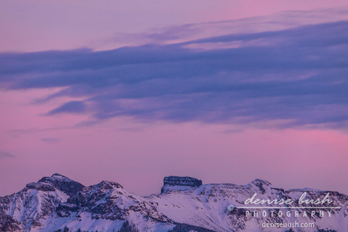 'Pink Sky Over Cock's Comb' © Denise Bush