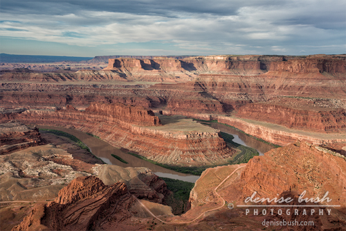 'First Light at Dead Horse Point' © Denise Bush