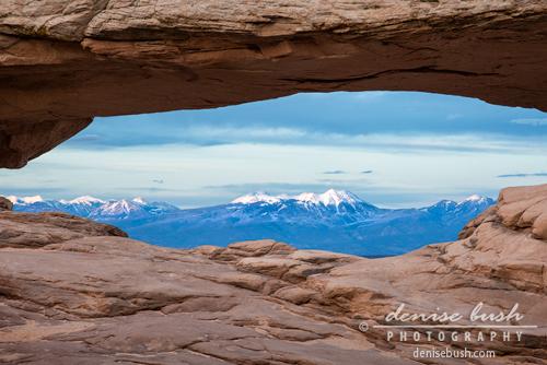 'Mountain Highlight' © Denise Bush