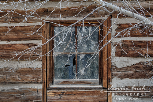 'Old Cabin Window' © Denise Bush