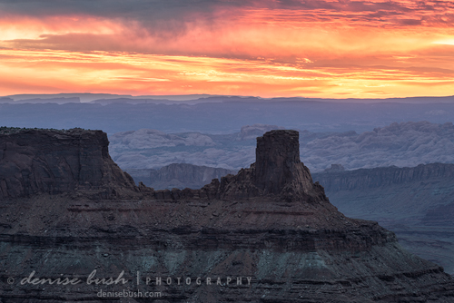 'Canyon Sunrise' © Denise Bush