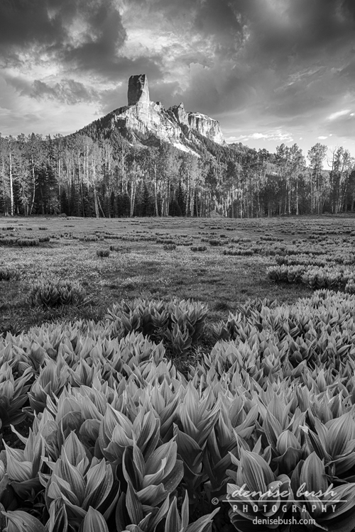 'Chimney Rock in B&W' © Denise Bush