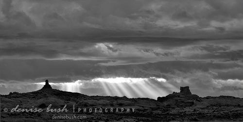 'Godbeams on Distant Forms' © Denise Bush