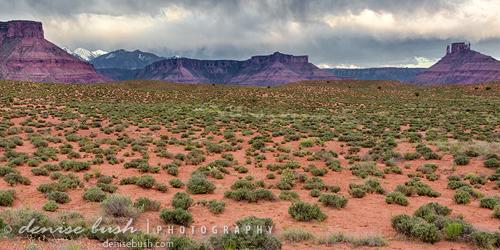 'Southwest Panorama' © Denise Bush