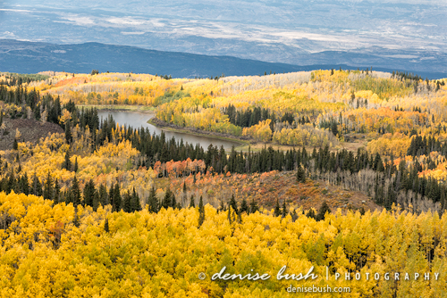 Grand Mesa View' © Denise Bush