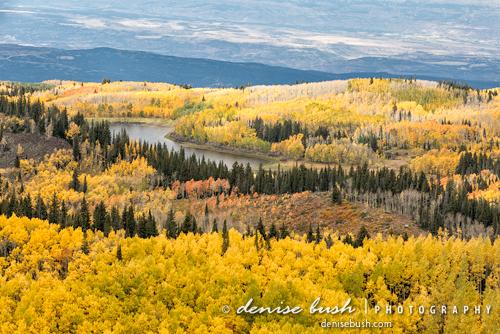 Grand Mesa View' © Denise Bush