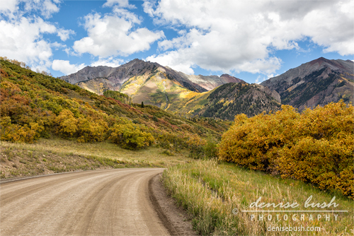 'The Road To Telluride' © Denise Bush