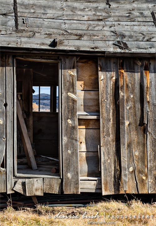 'Cabin With A View' © Denise Bush