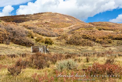 'Cowboy Cabin' © Denise Bush