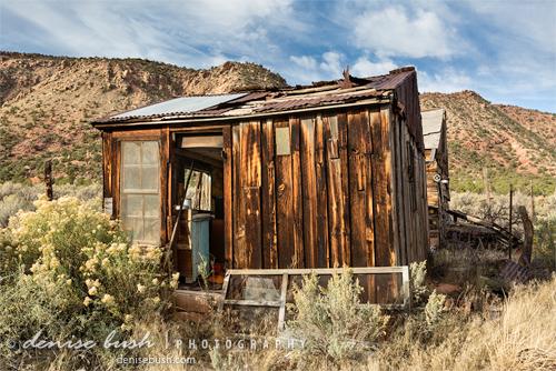 'Desert Storage' © Denise Bush