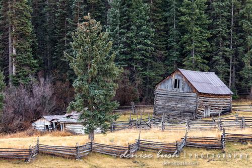 'Deserted Farm' © Denise Bush