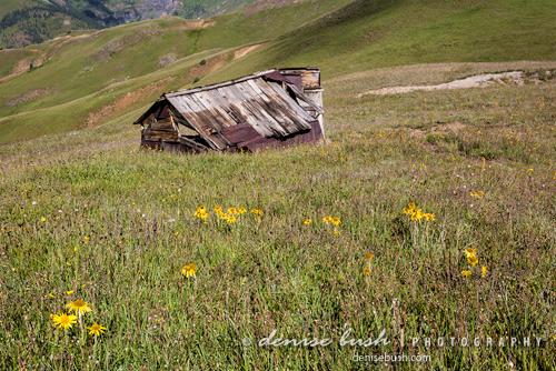'Mountain Top Mining Relic' © Denise Bush
