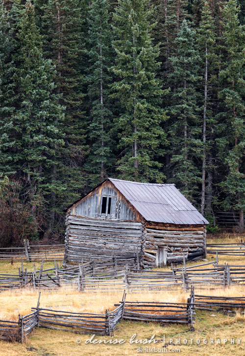 'Old Corral & Barn' © Denise Bush