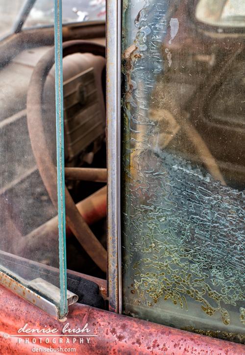 'A Peek Inside' © Denise Bush