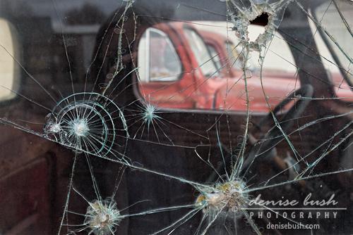 'Bullet Holes' © Denise Bush