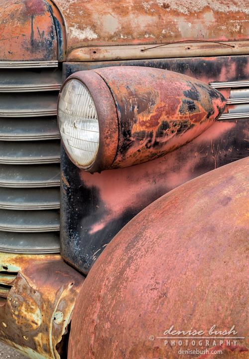 'Rusty Classic' © Denise Bush