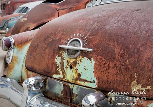 'Rusty Line-up' © Denise Bush