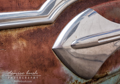 'Shiny Detail' © Denise Bush