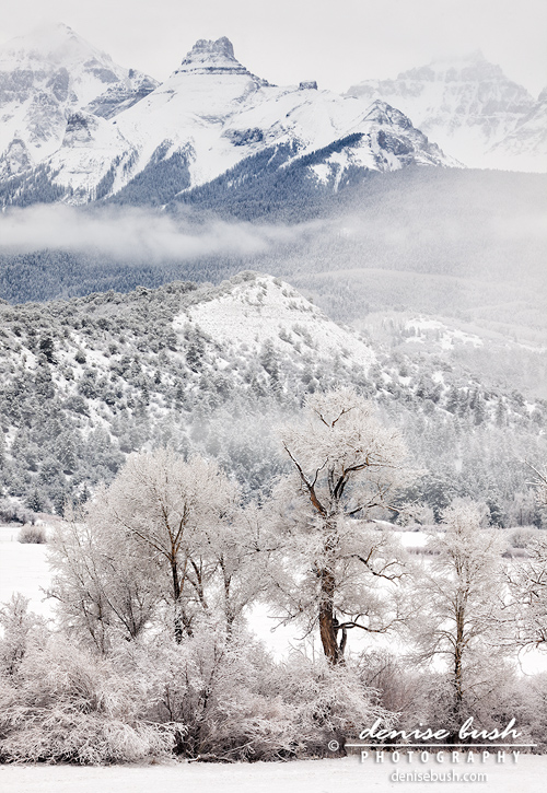 'Teakettle Mountain In Winter' © Denise Bush