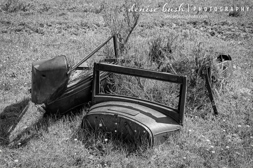 Parts of an old vehicle looks as it s being used as a planter.