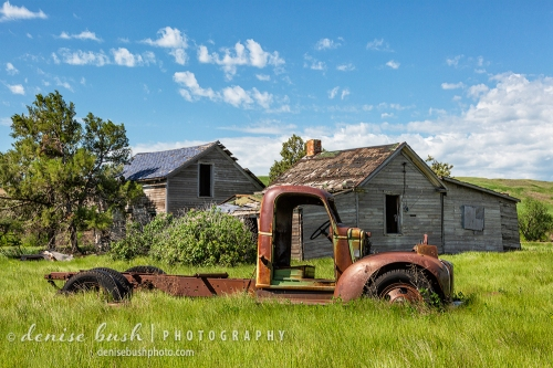 An old truck is at home in its abandoned surroundings.