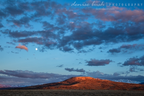 A setting moon makes an appearance as the sun goes down over a quiet Colorado landscape.
