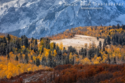 The first snow comes to the San Juan Mountains in October in a Autumn/Winter display.