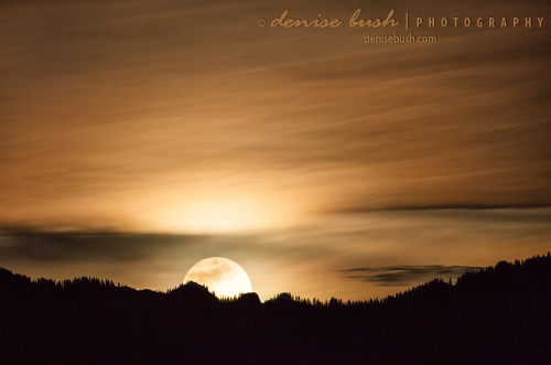 The super moon of January 31st rises brightly against the silhouette of the Cimarron Ridge near Ridgway Colorado.