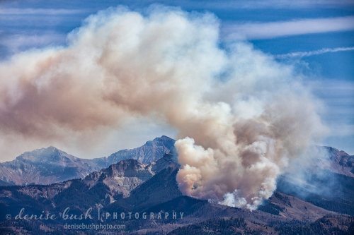 A wildfire burns in the National Forest of Southwest Colorado.