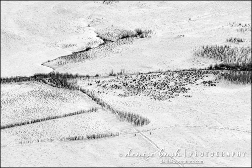 A composition of the valley below creates an abstract design of texture and line in B&W.