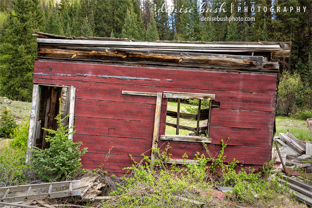 A lttle red shack, leaning and far beyond repair, has lost all hope.