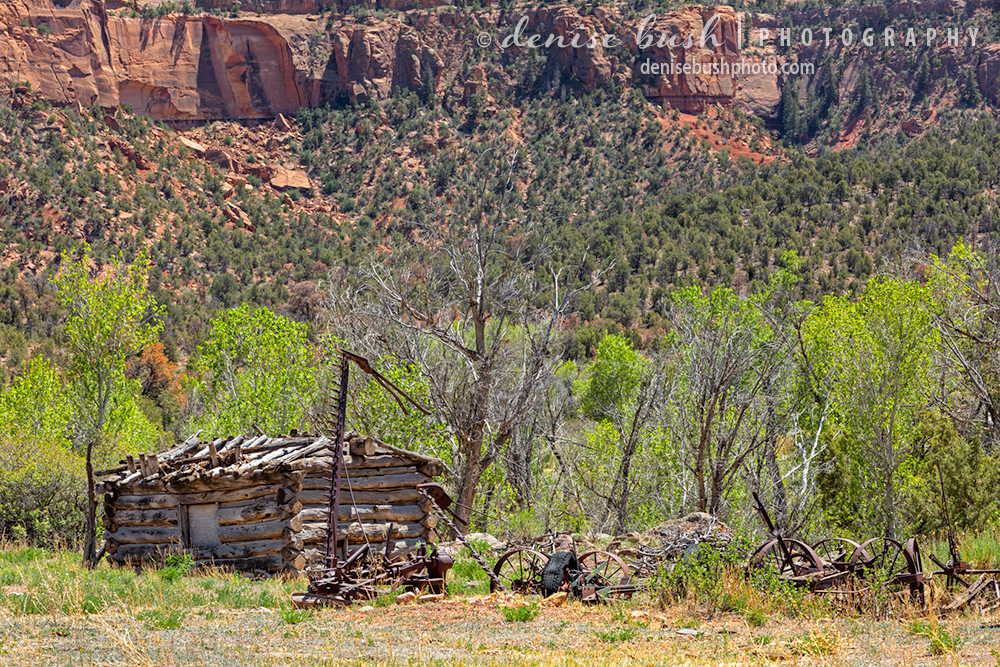 A tiny log cabin survives among some rusty ranch equipment in a canyon in Colorado.