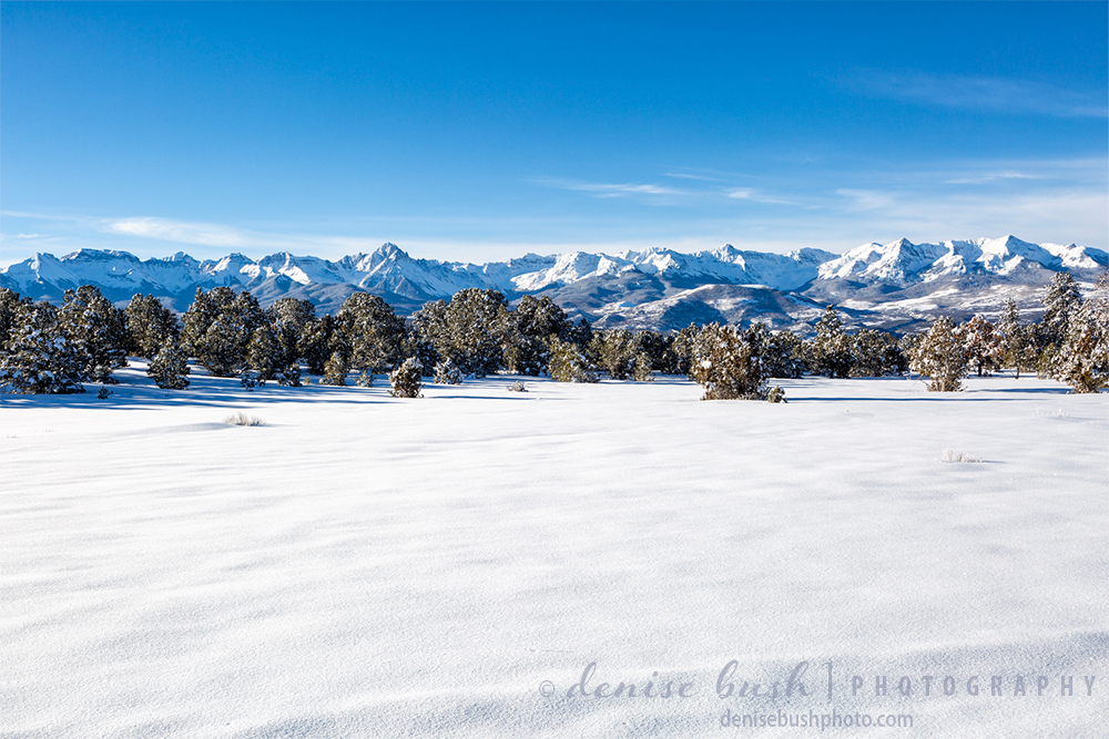 This scene of the Sneffes Range, a subset of Colorado's San Juan Mountains creates the quintessential winter landscape. The snow provides copy space for your message.