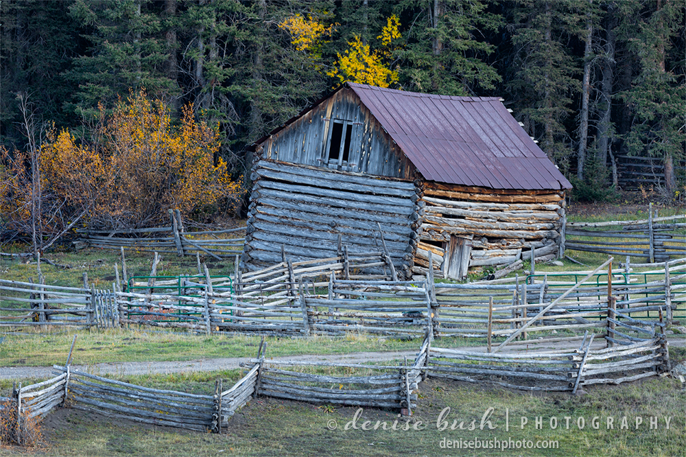 A rustic old barn has begun leaning to the left adding character to a subject from the past.