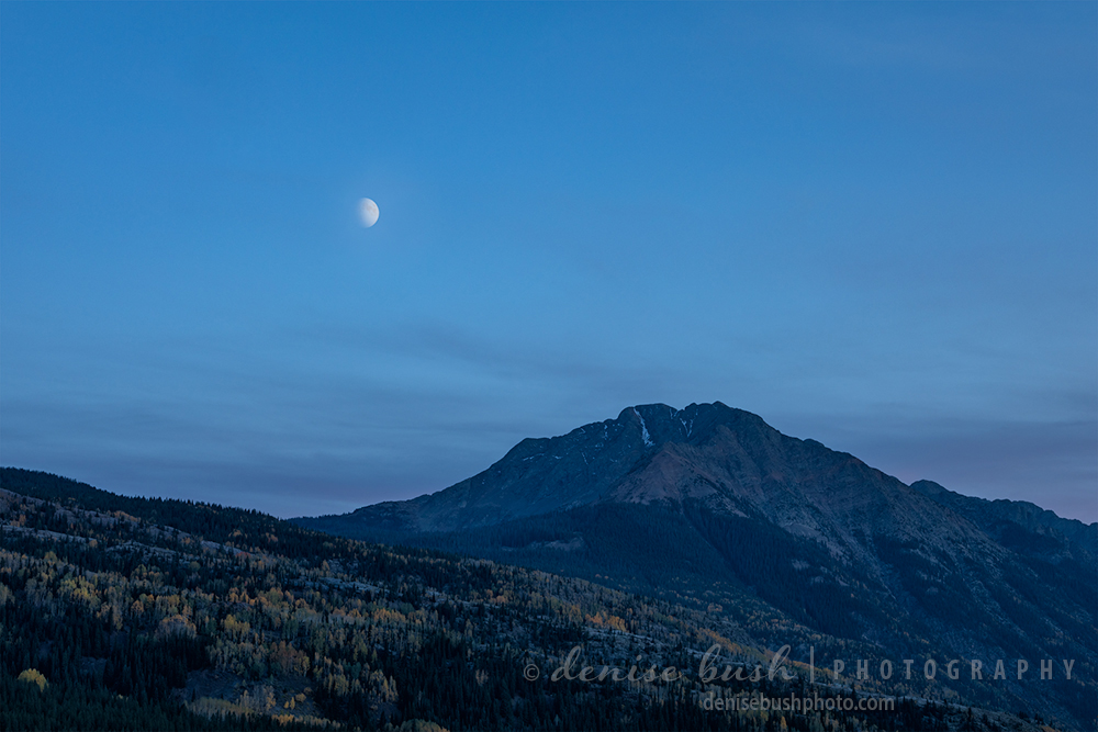 A waxing half moon rises over a peak and forest in the San Juan Mountains.