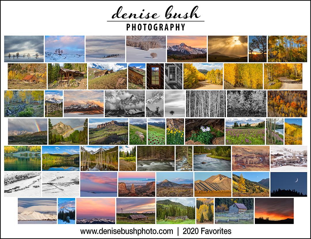 2020 Favorites Gallery | denisebushphoto.com