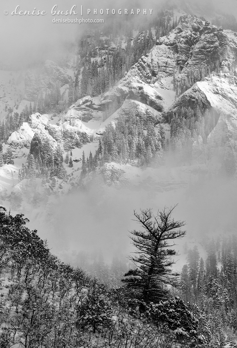 Clouds from a recent snowfall lift, giving way to a rugged mountain view.